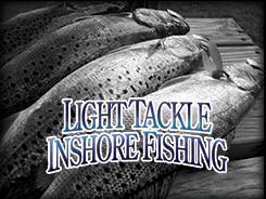 NC Light Tackle Inshore Fishing Charters